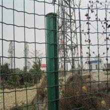 供应果园铁丝网 农场防护围栏网 养殖网