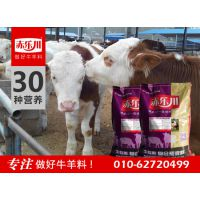 母牛专用下奶饲料品牌