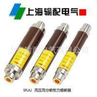 上海输配电气高压限流熔断器SFLAJ-12/50-125A