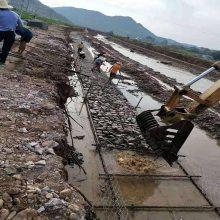 新疆河流建设镀锌格宾网笼|生态恢复六角石笼网|水利工程蜂巢网
