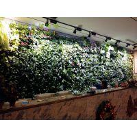 植物墙培训的形式有哪些