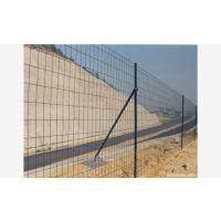 6*6浸塑铁丝网围栏现货荷兰网铁丝网围栏加粗养鸡网 现货供应