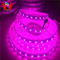 led5050RGB 软灯带 60灯 12v 高亮裸板 酒店室内装饰亮化