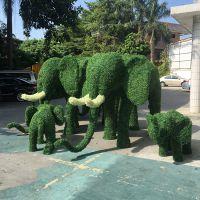 东莞紫萱工艺直销仿真五色绿雕 植物造型 动物造型 立体花坛 深圳包安装