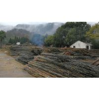 江西枸杞竹竿2到5米大量供应
