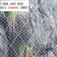 边坡柔性网主动防护网-四川主动防护网厂家