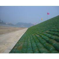 http://himg.china.cn/1/4_431_243984_644_516.jpg
