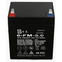 新乡鸿晟能源12V5AH拉杆音响用免维护电池