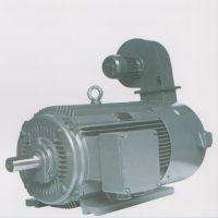 出售佳木斯YPB(F)355M2-6-200KW系列变频调速三相异步电动机