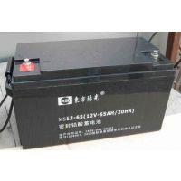 东方阳光蓄电池、厂家直销 铅酸免维护阀控式蓄电池