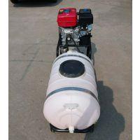 汽油动力喷雾器 打药机价格 四轮推车式农用喷药机