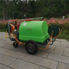 厂家直销家用大面积喷洒机蔬菜基地杀虫打药机旭阳汽油四轮喷雾机