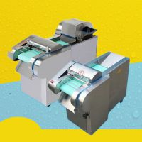 多功能小型多用切丝切块切丁 启航供应不锈钢切菜机 机器加工
