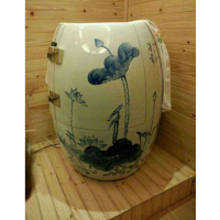 负离子能量排毒美容SPA陶瓷养生瓮负离子巴马瓷蒸缸巴马养生缸