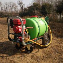 新款野外雾化施药机160L大棚蔬菜喷雾器垃圾场消毒防疫机