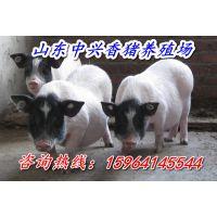 http://himg.china.cn/1/4_441_235418_600_400.jpg