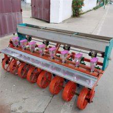 四行谷子精播施肥机 启航拖拉机牵引型蔬菜播种机 油菜专用精播机