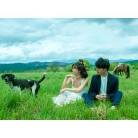 郑州中原区婚纱摄影【前十名口碑哪家好】婚纱照摄影工作室团购。