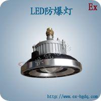 HBD9105 LED防爆投光灯