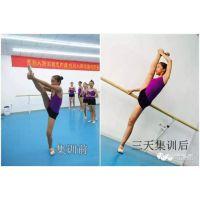 济南舞蹈培训班-阿昆舞蹈 清明节极速潜招生简章