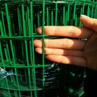河南绿色铁丝网荷兰网 养鸡网 圈地铁丝网 包塑网 养殖荷兰网