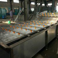 果蔬气泡清洗机 蔬菜红枣高压清洗机 翻浪式喷淋式水果清洗设备