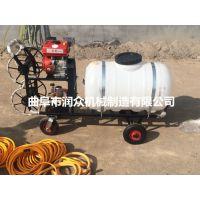 超高压喷雾机型号 大容量四轮推车式打药机 全方位喷药机 润众