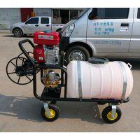 厂销 农田拉管打药机 四轮高压喷雾机 手推车式喷雾器