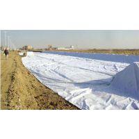河南厂家供应6米幅宽土工布 土工膜