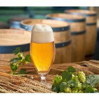 布劳恩自酿啤酒机葡萄酒机厂家直销