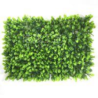 绿色尤加利草皮绿植 装饰会议室、酒店、休闲场所、广场