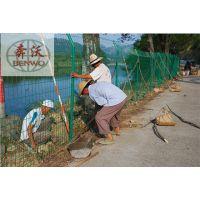 双边丝护栏网现货供应 铁丝网护栏网现货厂家直销
