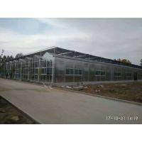 江苏徐州玻璃型休闲生态餐厅生态饭店10000平米型建造厂家