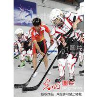 可移动仿冰冰球赛道生产厂家|北京仿冰冰球赛道租赁