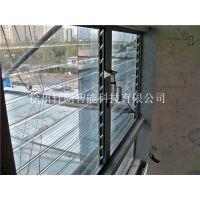 加工定制 TB玻璃百叶 透明可调电动百叶窗 厂家直销