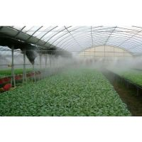 专注休闲场所人造雾效高压喷雾系统品牌厂家
