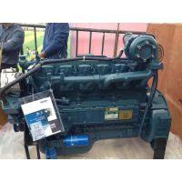 国二潍柴大泵WD10G220E21发动机配套5吨装载机