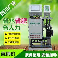 四川智能施肥厂家 大田果园水肥一体化设备柑橘种植手机远程控制