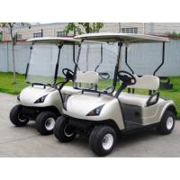 2座电动高尔夫球车,看房车,电动观光车