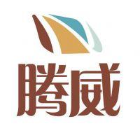 广州市腾威实业有限公司