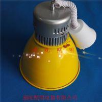LED生鲜轨道射灯30w正白光暖光高显指节能耐用LED猪肉灯生产厂家