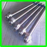 不锈钢 盖母头螺丝杆现货批发 加工定做 中山不锈钢螺丝杆厂