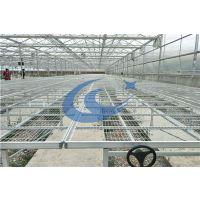 温室养花育苗使用移动苗床潮汐苗床的好处