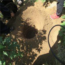 小型螺旋挖坑机 果树施肥挖坑机润众