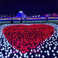 LED灯展亚克力芦苇灯 灯光节玫瑰花海 布艺郁金香地插灯 公园景观灯