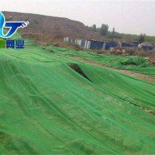 绿色盖土网厂家 建筑工地盖土网 天津绿网直销