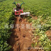 热销款花生收获机 农用小型挖花生机 圣鲁条铺式收获机