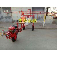 杭州电瓶车喷雾器 富兴手推式喷雾消毒机 养殖消毒设备
