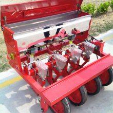大庆苜蓿播种 谷物蔬菜点种机 四轮防风种子点种机