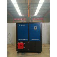 益宇批发价格直供YY-RQX型多燃料工业环保锅炉 家用小型热水取暖炉